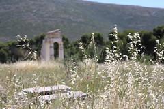 Epidavros, Site archéologique Grèce (Weblody) Tags: grèce fleur histoire ancien pivrados epidavros montagne poétique doux soleil sérénité tranquille