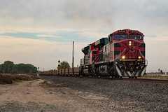 Cinco De Mayo Special (ScholzRUNNER) Tags: trains transportation tracks railroad mexico ferromex ge generalelectric emd electromotivedivision lathrop california usa