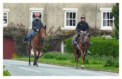 Back from the gallops. (Develew) Tags: racehorses jockey exercise middleham northyorkshire england