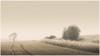 im Dunst (ernst.koeppel) Tags: landschaft landscape atmosphäre atmosphere field tree baum feld natur bayern bavaria oberfranken ruhe silence