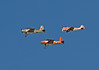 War birds (Michael Jefferies) Tags: australia queensland toowoomba aircraft aeroplane military show raaf