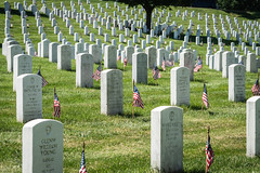 Graves Everywhere (Geoff Livingston) Tags: flag american usa memorial day veteran soldier grave gravestone cemetery flags arlington national