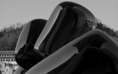 Distorted (Gabo Barreto) Tags: bilbao paisvasco basquecountry museum guggenheim reflections film 35mm 135 fujifilm fujiacros fuji canon a1 fd selfdeveloped scannedfromfilm art tulips balloons blackandwhite analoguephotography filmcamera filmisnotdead monochrome