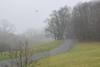 Parkway Landscape (esywlkr) Tags: raven stormy brp blueridgeparkway nature