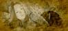 woman-13 (Poli Maurizio) Tags: woman girl female sketch portrait drawing drawingportrait abstractportrait digitalportrait actress actor celebrity hollywood pencil coloredpencil pencilportrait freehand fine art sky blackandwhite color beauty water hair artist disegno ritratto schizzo manolibera occhi chiaroscuro matita dibujos fantasy fantastic facebook twitter linkedin pinterest instagram tumblr bouchac indoor outdoor italy baby sicily ocean sea sun snow clouds man barocco illustrazione naturalism background bed concept grey conceptart atmosferic watercolor technique surrealism 3dweddingpartyfamilytravelfriendsjapanvacationlondonbeachcaliforniabirthdaytripnycsummernatureitalyfrancemeparisartflowerssanfranciscoeuropechinaflowernewyorkwaterpeoplemusiccameraphone 3daustraliachristmasusaskygermanynewcanadanightcatholidayparkbwdogfoodsnowbabysunsetcitychicagospaintaiwanjulybluetokyoenglandmexicowinterportraitgreenred 3dpolimaurizioartworkredfunindiaarchitecturegardenmacrospringthailandukseattlefestivalconcertcanonhouseberlinhawaiistreetlakezoofloridajunemaywhitevancouverkidstreecloudstorontobarcelonageotaggedhome 3dbwbwdigitalseadaytexasscotlandcarlighthalloweencampingchurchanimalstreeswashingtonrivernikonaprilbostongirlirelandgraffitiamsterdamrocklandscapeblackandwhitecatsnewyorkcitysanromeroadtripurbanhoneymoonocean 3dwatercolorsnewzealandmarchblackmuseumyorkhikingislandmountainsyellowsydneysunhongkongshowgraduationcolorfilmmountainanimallosangelesschoolmoblogphotodogs 3dartdesigndisegnosiciliacalabriabasilicatacampaniamarcheabruzzomoliselaziotoscanaemiliaromagnalombardiavenetofriuliveneziagiuliapiemontevalledaostaliguriatrentinoaltoadigepuglia 3dlandscapepaesaggiolunasolemarenuvolecittàtramontoalbamontagnecollinenebbialuceautomobilearredamentointerniesterninaturamortacieloragazzadonnauomobambinofruttabarca 3dcanigattirinascimentomodelbarocconaturalismomattepaintingfuturismoastrattismocubismosurrealismorealismoiperealismoclassicismorococomanierismoromanticismoimpressio