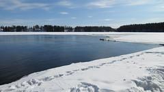 River Oulujoki (jartsf) Tags: kevät spring