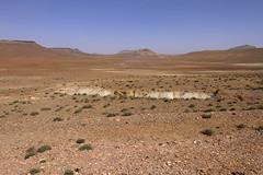 2018-3927 (storvandre) Tags: morocco marocco africa trip storvandre marrakech marrakesh valley landscape nature pass mountains atlas atlante berber ouarzazate desert kasbah ksar adobe pisé