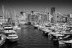 Marseille, vieux port, 1 (Patrick.Raymond (4M views)) Tags: 13 marseille vieux port sreet photo bateau mer littoral nikon peche
