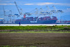 The loneliness of the long distance runner (James_D_Images) Tags: runner person man figure coast pacific ocean tsawwassen nation britishcolumbia robertsbank port container ship cranes marsh levee