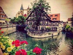 Esslingen am Neckar (DrQ_Emilian) Tags: urban explore city town cityscape river water outdoors oldtown building architecture street losteria light colors details travel discover visit esslingen neckar stuttgart badenwürttemberg germany europe flowers plant