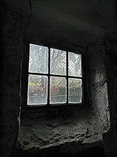 Coal bin window