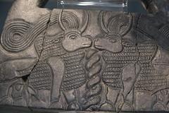 Jiroft Museum (53) (edow) Tags: southiran iran cyrus darius persia kerman bam jiroft halil halilriver halilrood konarsandal konar sandal kenar 3rd thirdmillenniumbc bronzeage chlorite conicalvase mythicalcreatures sumerian indus iraq india civilization mesopotamia tabriz tehran nationalmuseumtehran