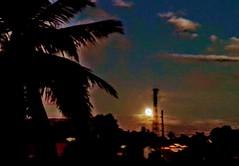 Someday... (FloRabino) Tags: sunset sunrise sunshine summer photography philippines dream dreams travel wanderer batangas titangbikol tree sky