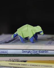 Raccoon (Jose_Herrera_B) Tags: origami origamidesign origamiart origamisculpture origamimodel origamilatinoamericano raccoon joseherrera joseherreraorigami paperfolding papiroflexia paperart paper