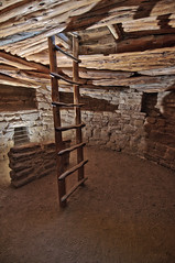 Inside Spruce House Kiva (William Horton Photography) Tags: anasazi ancestralpueblo cortez mesaverdenationalpark nikon sprucehouse ancientruins autumn cliffdwelling cliffdwellings cliffs color fall interior kiva kivas landscape morning nature ruins sandstone scenic sunny tan treeshadow vertical windows