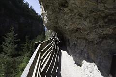 DSC_4395 (Stefano Dorigo) Tags: sentiero panoramico verso san romedio val di non sanzeno predaia antico canale irriguo ottocentesco provincia autonoma trento passeggiata italy nikon d610