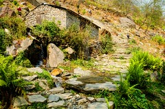 A Piece of Heaven (sakthi vinodhini) Tags: hdr nepal abc annapurna trek trekking hills mountain house himalayas stream ferns vegetation nature pokhara