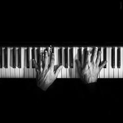 sostenido (*BegoñaCL) Tags: mano hombre música piano planonadir blancoynegro begoñacl