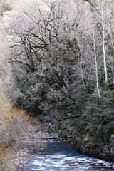 La Zinqueta (Mikel Rmx) Tags: zinqueta pirineos montaña rio senderismo canoneos77d efs55250mmf456isii labaldechistau gistain sanjuandeplan valledegistain primavera nature trekking arroyo bwfiltropolarizadormrc