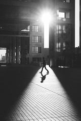 Odaiba 台場|東京 Tokyo (里卡豆) Tags: minatoku tōkyōto 日本 jp 東京都 olympus epl9 25mm f12 pro olympus25mmf12pro odaiba 台場 東京 tokyo