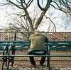 shades of green (gguillaumee) Tags: film analog grain 6x6 bench ruckenfigur man lonely tompkinssquare nyc newyork park rolleiflex kodakportra mediumformat tree street streetphotography city urban