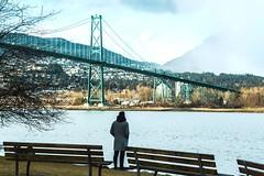 Bridge the gap (parzibal) Tags: lionsgatebridge vancouver britishcolumbia bc vancity bridge stanleypark canada discovercanada canon canoncanada waterfront bench photography canadaphotography