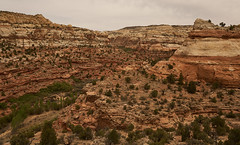 Grand Escalante, Utah (Zzyzzx CA) Tags: utah grand staircase escalante canyon river national monument rocks usa southwest