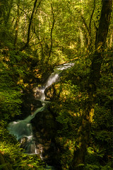Cascada primaveral (Fran Nieto) Tags: paderne acoruña españa es rio verde cascada waterfall greencolor