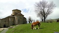 San Miguel de Aralar (santiagolopezpastor) Tags: espagne españa spain navarra románico romanesque medieval middleages iglesia church caballo horse
