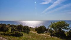 Bruddesta blue & green (Cajofavi) Tags: sea landscape sky grass water sunny tree bush sweden öland bruddesta