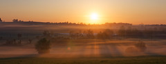 parallel rays (eichlera) Tags: cloud fog trees fields sun sunrise sunlight rays morning katzensee zurich switzerland