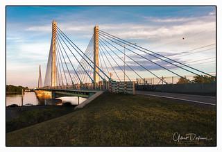 BridgeA25