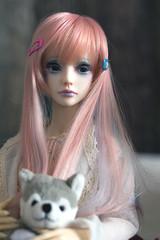 IMG_4870 (|Mirt) Tags: zaoll luv bjd abjd doll