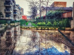 Clouds trapped in a puddle (LUMEN SCRIPT) Tags: composition colours urbanreflections refletsurbains reflet reflection water rain suburbanphotography suburb urban wetreflection reflections mirror france