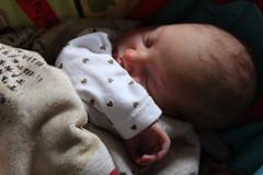 Light and shadow (quinn.anya) Tags: eliza baby newborn nap light shadow blanket manuscript