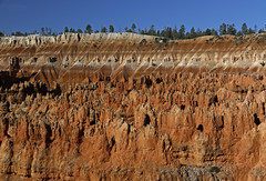 A Slice of Bryce (tomblandford) Tags: hellofaplacetoloseacow brycecanyon bryceimages utahlandscape utahscenic redrocklandscape hoodoos wildlifeofthewest conservation protecttheenvironment protectpubliclands protectwildlife natureconservancy