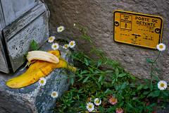 Poste de detente (Calinore) Tags: humour humor banade postededetente street rue fruit banana fleurs flower nature rubbish detritus poubelle