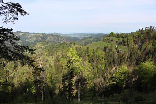 Wanderregion Tösstal im Frühling