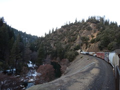 Mornings in the canyon... (Railroad Rat) Tags: uncle rides usa united states america traveling freight train overland route ramble union pacific transient