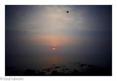 just before magic hour #7 (kouji fujiwara) Tags: ricohgxr ricoh gxr maunta12 a12 minimal fineart fine art sunset dusk evening magichour magic hour sea seascape