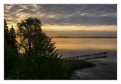 Morgens am Wieker Bodden (bavare51) Tags: sonnenaufgang wiekerbodden rügen dranske wasser ostsee bäume wolken clouds sky himmel landschaft natur