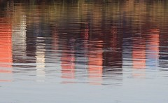 Watercolor (carlos_ar2000) Tags: agua water color colour reflejo reflected reflection distorsion distortion art laboca buenosaires argentina
