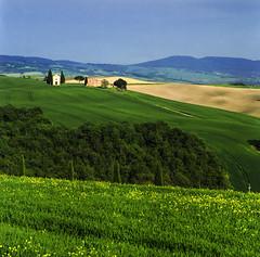 Val D'Ocia_8 (| zeno | chase the light) Tags: valdorcia vitaleta collina verdecampo prato hasselblad180mm fujipro400h bellinic41