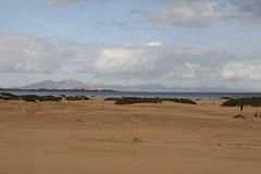 201702130740 - Canaries, Fuerteventura; dunes de Corralejo (Pierrot_B.) Tags: pierrotb canaries fuerteventura lanzarote tenerife lagomera
