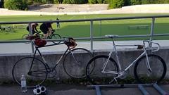 Helsinki velodrome (hugovk) Tags: bike cycling bicycle velodrome helsinki wauhtiajot velorution ratapyöräilytapahtuma velorutionratapyöräilytapahtuma helsinkivelodrome kamppi helsingin uusimaa finland geo:neighbourhood=kamppi geo:locality=helsinki geo:county=helsingin geo:region=uusimaa geo:country=finland camera:make=samsung camera:model=smg950f exif:orientation=horizontalnormal exif:exposure=1676 exif:aperture=17 exif:isospeed=40 exif:exposurebias=0 exif:flash=noflash exif:focallength=42mm meta:exif=1524920212 hvk hugovk samsung smg950f samsungsmg950f cameraphone s8 samsungs8 galaxys8 samsunggalaxys8 helsingfors nyland suomi cycle polkupyörä fillari 2017 august summer kesä