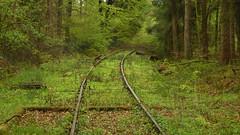 Tracks II (offroadsound) Tags: muna lübberstedt rail tracks traces ammunitionfacility munitionsanstalt