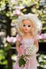 Sindy (Zver-Le) Tags: sindy pedigree doll vintage magnolia