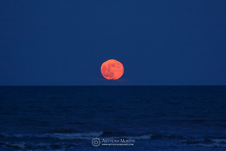 Full moon rising out of the sea
