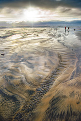 Enjoying Cannon Beach (William Horton Photography) Tags: cannonbeach oregon oregoncoast pacific pacificocean beach clouds dogs ocean people rivulets sunset