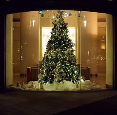 O Tannenbaum (last in series) (bior) Tags: christmastree otannenbaum officebuilding office portra160vc expiredfilm kowasix kowa kowa6 6x6cm mediumformat 120 square squareformat sanjose downtownsanjose